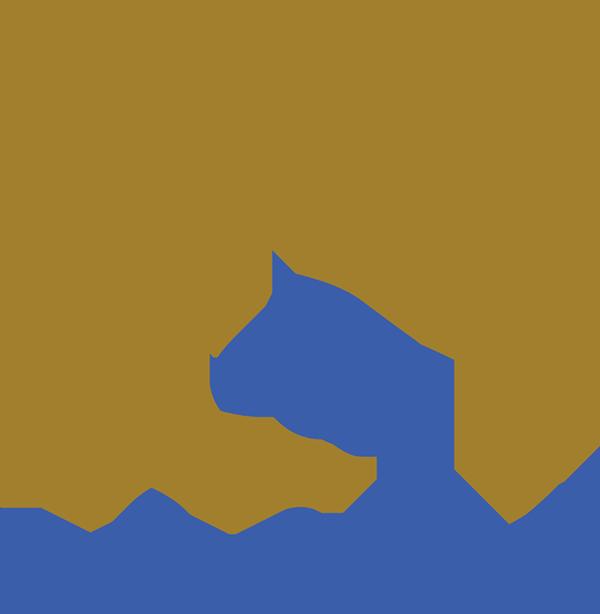 EqSol Marketing