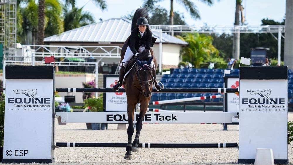 Equine Tack & Nutritionals sponsor jump WEF